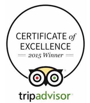 Certificate of Excellence Logo
